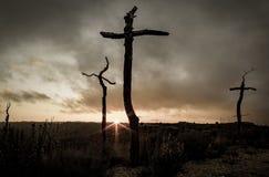 Croix dans la for?t images libres de droits