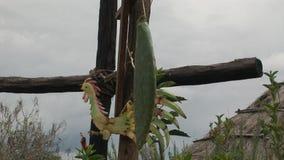 Croix en bois sur la montagne banque de vidéos