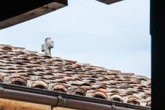 Croix en pierre catholique blanche médiévale sur le toit carrelé photographie stock libre de droits