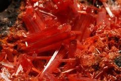 Cromato rosso eccellente, Crocoite e cristalli del minio Fotografia Stock