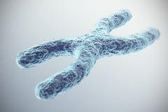 Cromosoma X su fondo grigio con effetto di profondità di campo, concetto scientifico illustrazione 3D illustrazione di stock