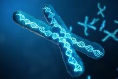 cromosomas X del ejemplo 3D con la DNA que lleva el código genético Concepto de la genética, concepto de la medicina Futuro, gené libre illustration