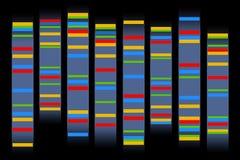 Cromossomas ilustração stock
