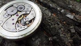 Cronómetro viejo en un fondo de madera elegante, mecanismo del reloj metrajes