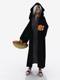 Crone offering poisoned apple Stock Image