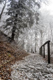 Cronicles του τοπίου Narnia στοκ φωτογραφία με δικαίωμα ελεύθερης χρήσης