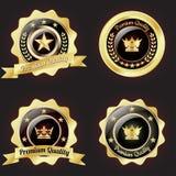 Cronologia variopinta dei bottoni con l'insieme delle icone Immagine Stock Libera da Diritti