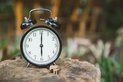Cronometri su tempo di legno del fondo della natura dell'albero all'orologio del ` di 6 o Fotografia Stock Libera da Diritti