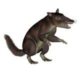 Cronopio dentiacutus, prehistoric mammal - 3D render Royalty Free Stock Image