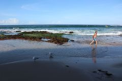 Cronulla strand-gamal man och havet royaltyfria bilder