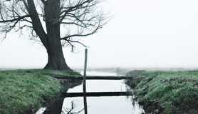 Crook near a tree. A crook near a tree with a small bridge going over it Stock Photo