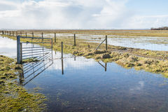 Crooked steel gate in a flooded nature area Royalty Free Stock Photos