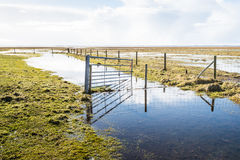 Crooked steel gate in a flooded nature area Royalty Free Stock Image