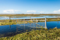 Crooked steel gate in a flooded nature reserve Royalty Free Stock Photos
