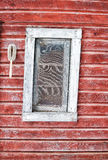 Crooked window in red faded wall. Crooked wood framed window in a painted peeling red wood slat exterior wall royalty free stock images