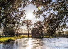 Croome Park Lake and Conifers, Worcestershire, England. The lake at Croome Park, the work of Lancelot `Capability` Brown, frozen in early winter with the Stock Photos