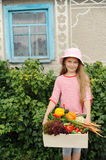 Crop. An image of a girl with a box of vegetables royalty free stock image