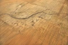 Crop from above. Royalty Free Stock Photography