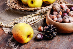 Crop of apples and nuts Stock Image