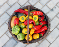 Crop in a basket Royalty Free Stock Photos