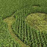 Crop Circle Royalty Free Stock Images