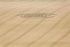 Crop circle in field Royalty Free Stock Photo