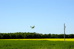 Crop Duster. Crop Dusting Plane making a pass over a canola field Stock Photo