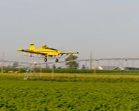 Crop duster. A crop dusting airplane working a corn fiel in Colorado Royalty Free Stock Images