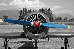 Crop duster with blue propeller Stock Photo