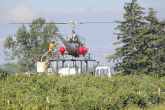 Crop Duster and Crew. Crew members work together preparing and refilling a helicopter specially equipped to chemical spray a berry crop in Sumas, Washington on stock image