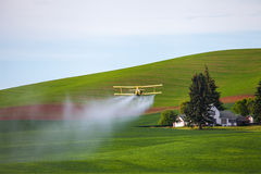 Crop Duster Spraying Green Field. Crop duster plane flying over field with farmhouse in background in spring in Palouse area of Washington State Royalty Free Stock Photography