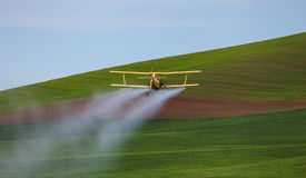 Crop Duster. Plane flying over green field in the springtime Royalty Free Stock Photos