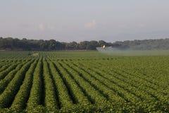 Crop duster Stock Image