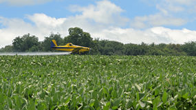 Crop Dusting. Airplane spraying insecticides onto a soybean farm field Stock Image