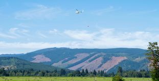 Crop Dusting, Mount Hood, Oregon. Helicopter spreading fire retardant on farmers field near Mount Hood, just outside of Portland Oregon royalty free stock photography