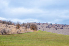 Crop field in a hill area who have just been planted with cloudy weather Stock Photography