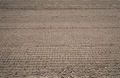 Crop field prepared for planting Stock Image