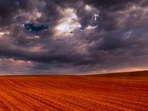 Crop field and stormy sky II Royalty Free Stock Images