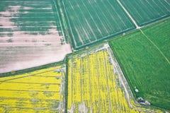 Free Crop Fields Stock Image - 45355931