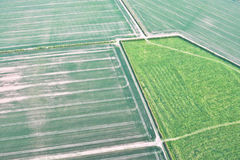 Crop fields Royalty Free Stock Photography