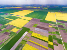 Crop fields in the spring, freshely harvested. Aerial view Stock Image