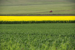 Crop fields and tractor Royalty Free Stock Photos