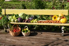 A crop of fresh vegetables lies on a bench in the open air. Fresh vegetables lie in the open air. Cabbage, carrots, eggplants, peppers, tomatoes, greens stock photo