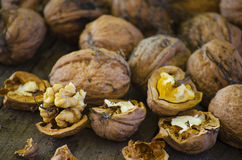 Crop harvested walnuts Royalty Free Stock Photo