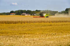 Crop harvesting Stock Photos