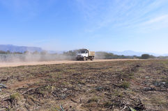 Crop Hauler on Agave Farm. Amatitan, Mexico - June 16, 2013: A blue agave crop hauler outside Amatitan collecting harvest for delivery to nearby tequila Stock Images