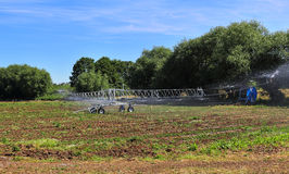 Crop Irrigation with spraying machine Stock Photo