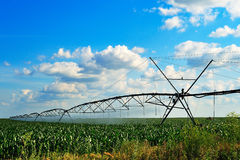 Crop Irrigation. Using the center pivot sprinkler system Stock Photography
