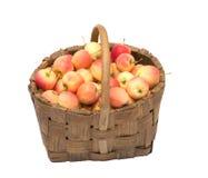 Crop Of Apples. Stock Photo