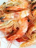Crop Shot Steamed Shrimp Royalty Free Stock Photography